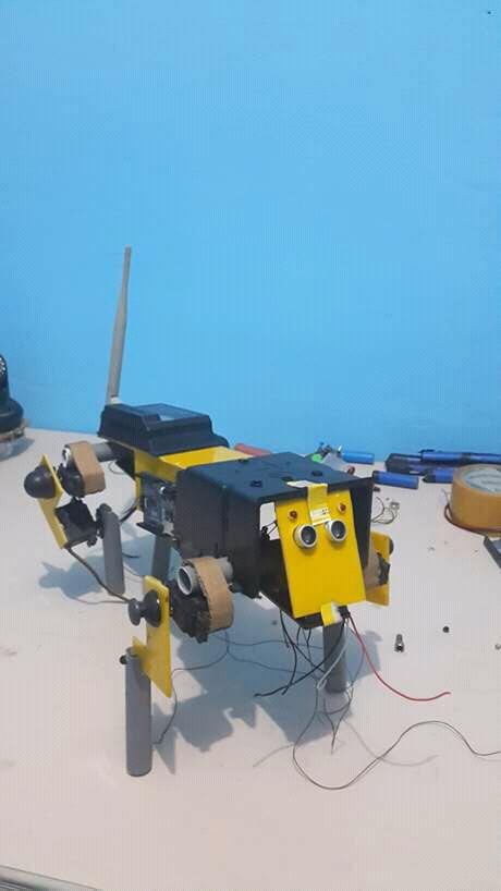 Togo : Sam Kodo prototype un robot chien
