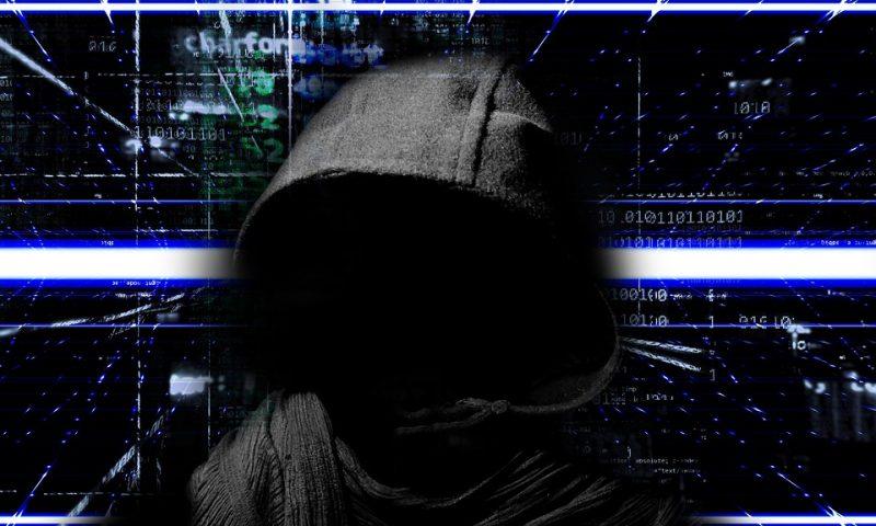 Niger : L'heure des stratégies de renforcement de la cybersécurité