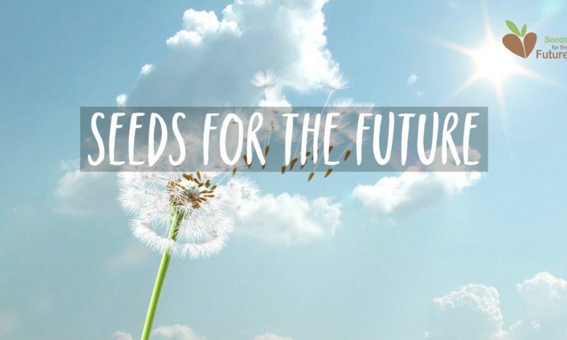 Des étudiants sud-africains bénéficient du programme Seeds for the Future